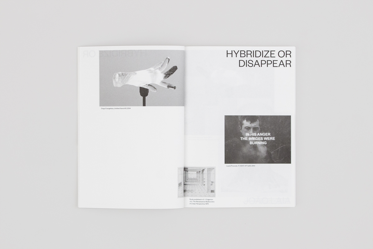 Hybridize or Disappear