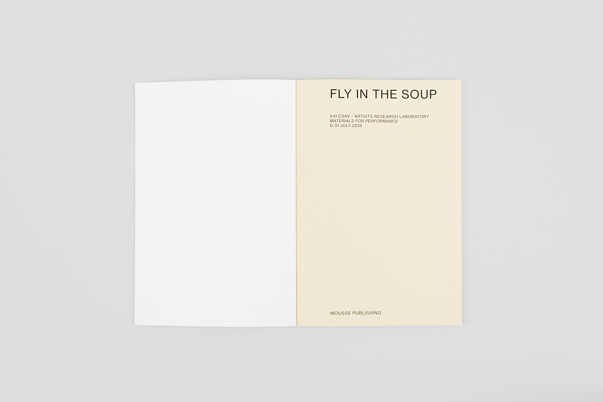 Fly in the Soup